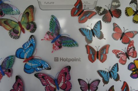DECORATIVE BUTTERFLY FRIDGE MAGNETS x 10 BEAUTIFUL BUTTERFLIES 2 SIZES AVAILABLE